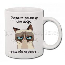 Бяла керамична чаша - Grumpy Cat 17
