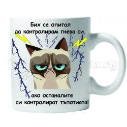 Бяла керамична чаша - Grumpy Cat 31