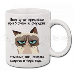 Бяла керамична чаша - Grumpy Cat 20