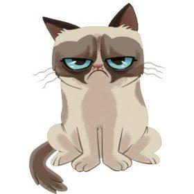 Чаши - Grumpy cat